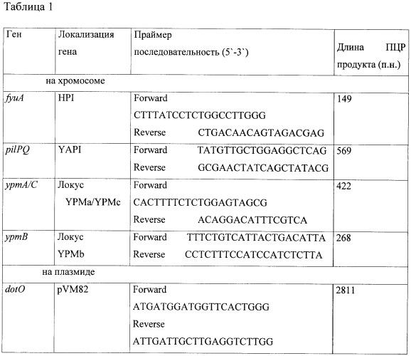 Тест-штамм yersinia pseudotuberculosis для дифференциации бактерий yersinia pseudotuberculosis генетической группы ia