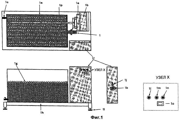 Способ и устройство для получения водородсодержащей текучей среды, применимой для живых организмов