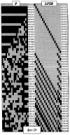 Способ формирования регулярных последовательностей с элементами, составленными из двоичных сигналов