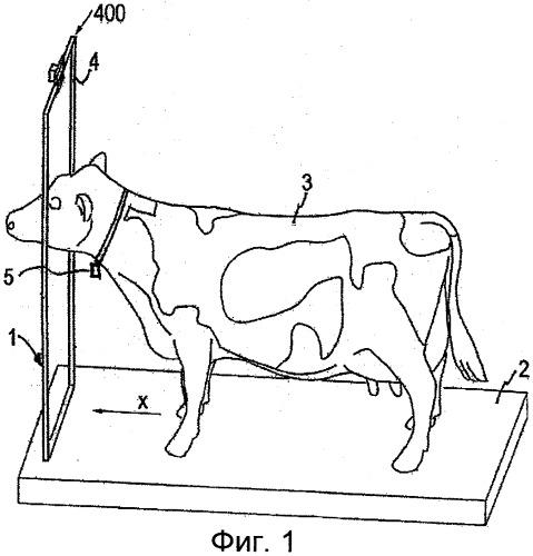 Устройство и способ для предоставления информации о животных при их прохождении через проход для животных