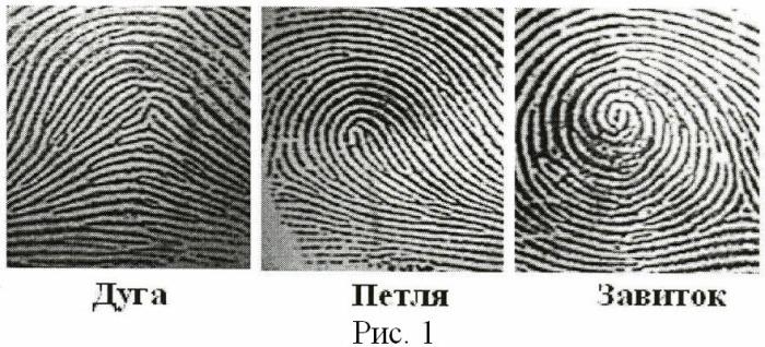 Способ определения психологических особенностей личности по генетическому маркеру дерматоглифики указательного пальца