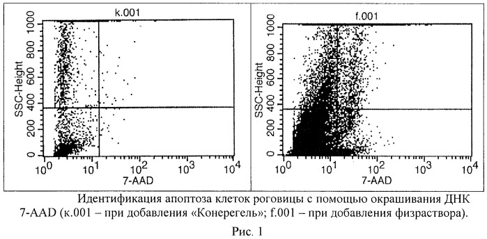 Способ получения тест-объекта из клеток роговицы эмбриональных цыплят для оценки цитотоксичности лекарственных средств