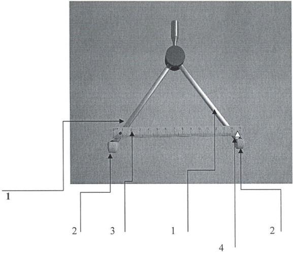 Устройство для диагностики функциональных состояний позвоночно-двигательного сегмента