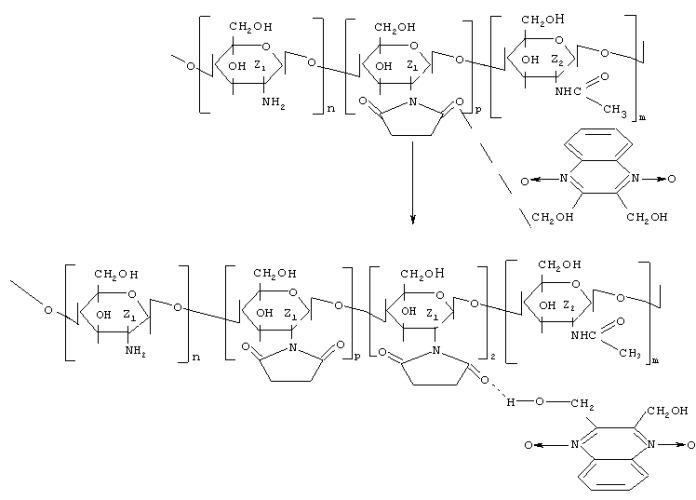 Композиция комплекса сукцината хитозана и диоксидина с хлоргексидином, обладающая антибактериальным и ранозаживляющим эффектом