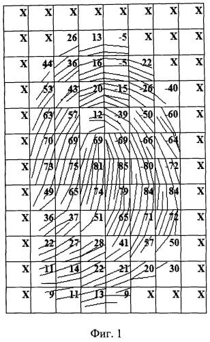 Способ классификации рисунков отпечатка пальца при аутентификации личности