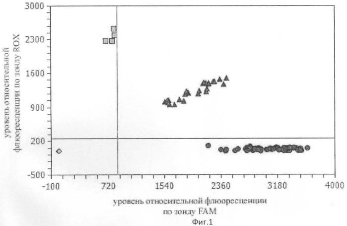 Способ прогнозирования уровня артериального давления у беременных в зависимости от генетического полиморфизма эндотелина 1