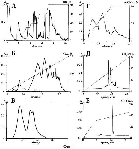 Полипептид из морской анемоны heteractis crispa, обладающий анальгетическим действием