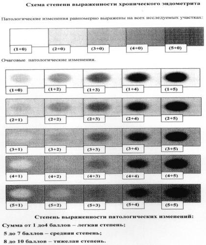 Способ количественной морфологической оценки степени выраженности хронического эндометрита