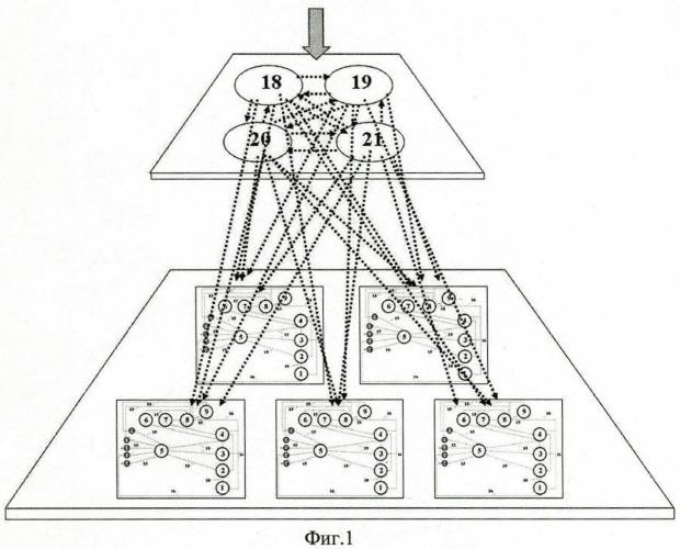 Локальная диагностическая причинно-ассоциативная семантическая офтальмомикрохирургическая компьютерная сеть
