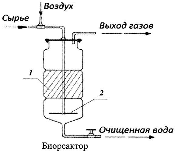 Способ очистки сточных вод от фенольных соединений
