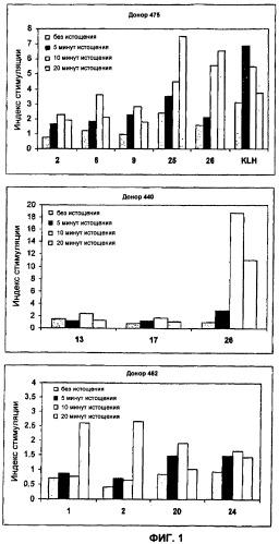 Анализы т-клеток
