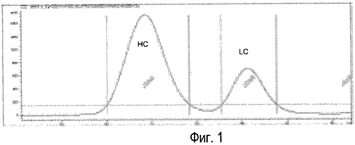 Способ характеризации рекомбинантного поликлонального белка