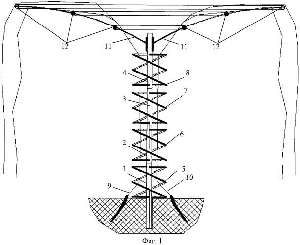 Способ формирования ствола и структуры кроны древовидного виноградника (вариант русской логики - версия 2)