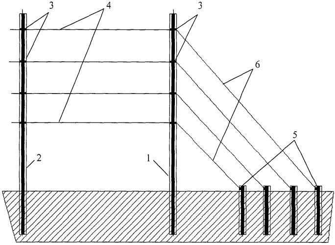 Способ формирования линейно ориентированного виноградника (версия 1)