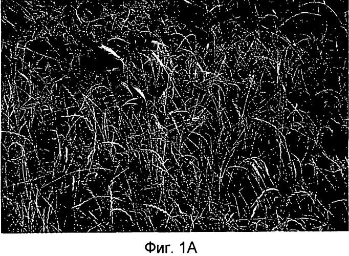 Гербицидный состав триэтаноламиновой соли глифосата и способы подавления роста растений с его использованием