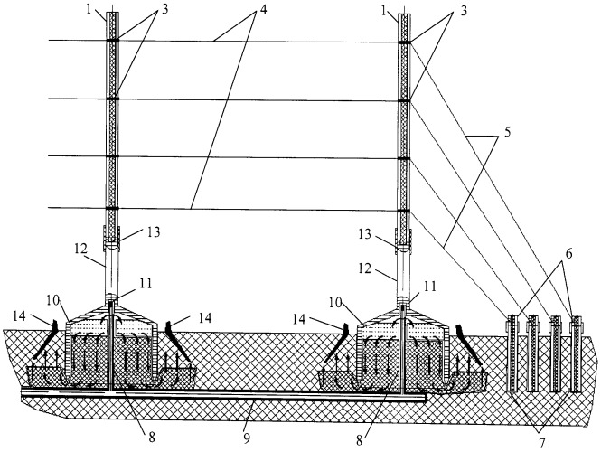 Способ формирования линейно ориентированного виноградника с капельным орошением (версия 3)