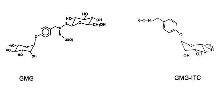Применение производных изотиоцианата в качестве противомиеломных средств