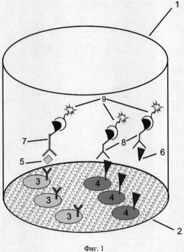 Способ одновременного детектирования тиротропина и общего тироксина в сухих пятнах крови