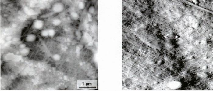 Микронаноструктурированный биопластический материал