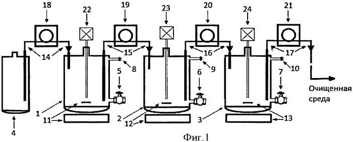 Способ биоремедиации воды, загрязненной тринитротолуолом
