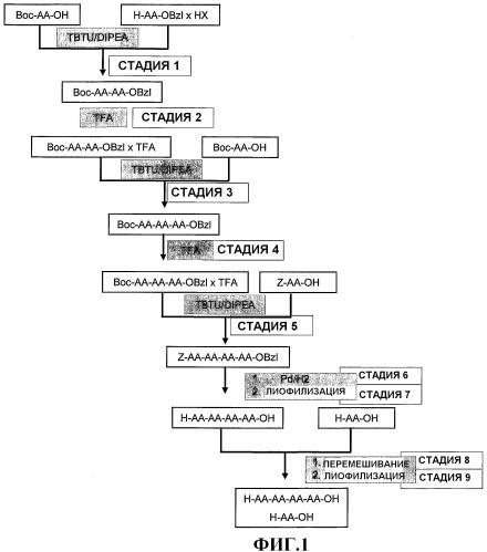 Комбинация пептидов