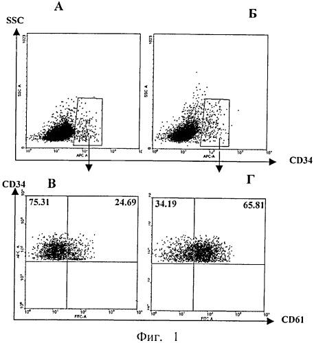 Средство, индуцирующее дифференцировку стволовых кроветворных клеток в тромбоциты