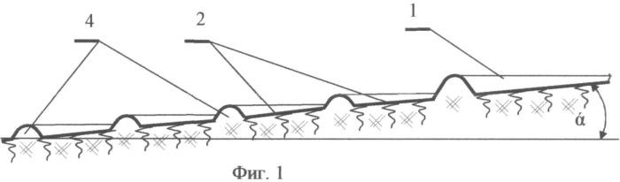 Способ сохранения водно-физических свойств почвы