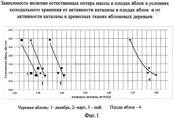 Способ предварительного прогнозирования лежкости плодов и ягод при хранении