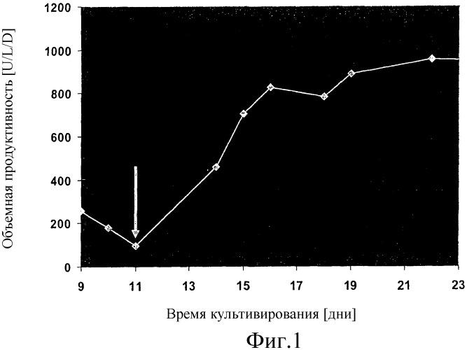 Способ экспрессии белка