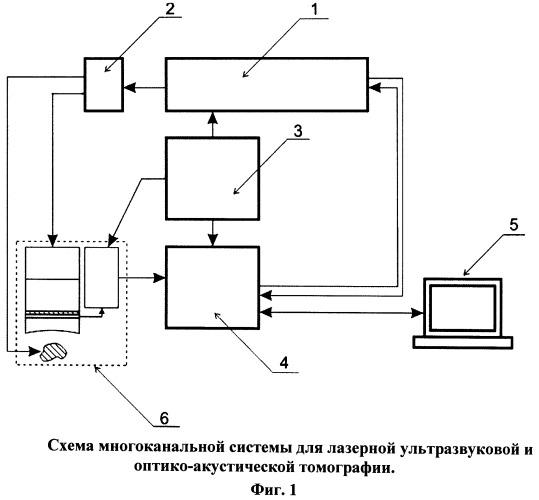 Способ лазерной оптико-акустической томографии и устройство для его реализации (варианты)