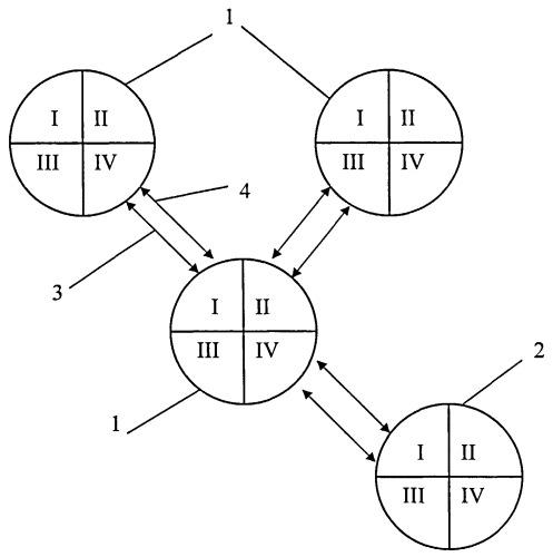 Способ маршрутизации для беспроводных мобильных самоорганизующихся сетей передачи данных