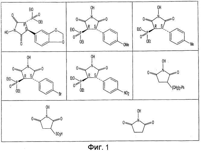 Имидированный биополимерный адгезив и гидрогель