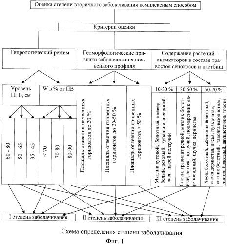 Способ комплексной оценки вторичного заболачивания осушенных кормовых угодий с использованием экспресс-метода