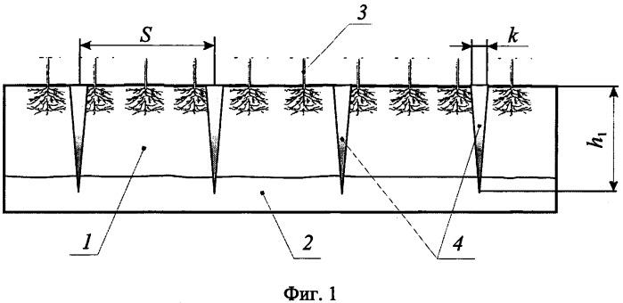 Способ безотвальной обработки склоновых земель
