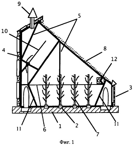Фабрика-теплица для интенсивного растениеводства (устройство и способ)
