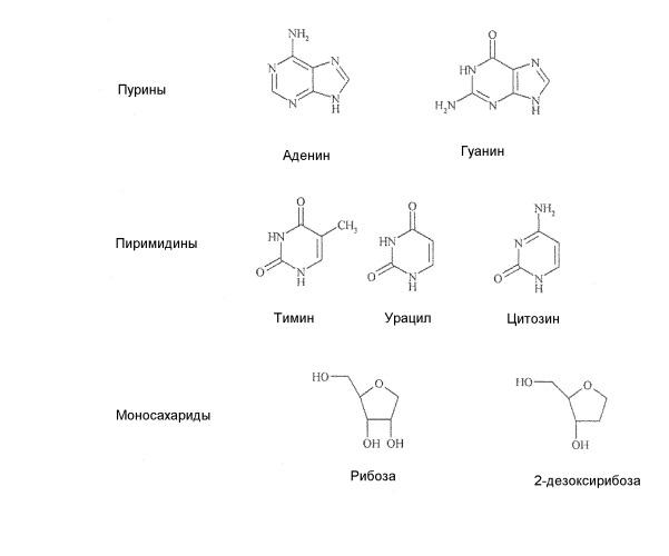 Аналоги азацитидина и их применение
