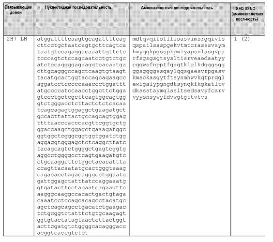 Одноцепочечные мультивалентные связывающие белки с эффекторной функцией