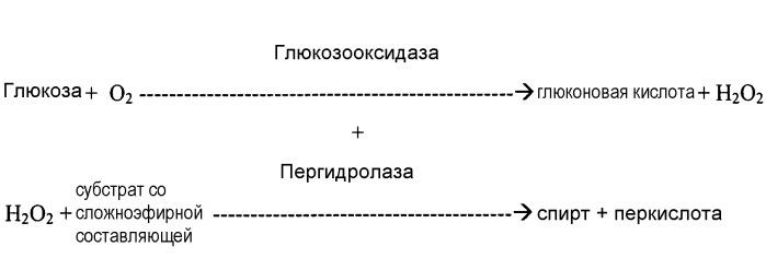 Фермент для продукции длинноцепочечной перкислоты