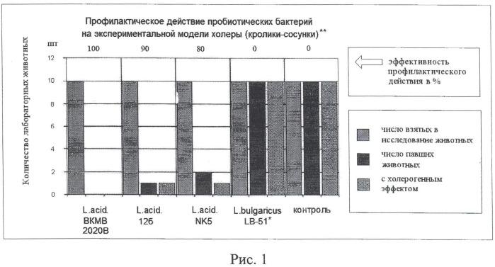 Способ оценки биологической активности лактобацилл и бифидобактерий относительно холерных вибрионов in vitro