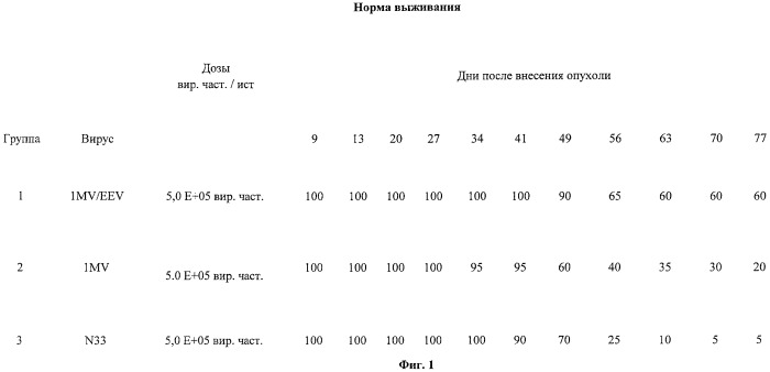 Процесс получения поксвирусов и композиции поксвирусов