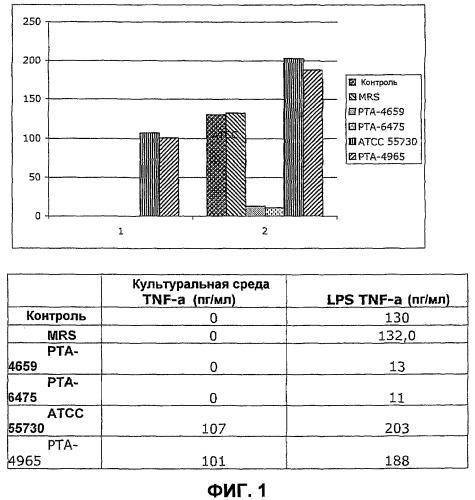 Применение отобранных молочнокислых бактерий для уменьшения атеросклероза