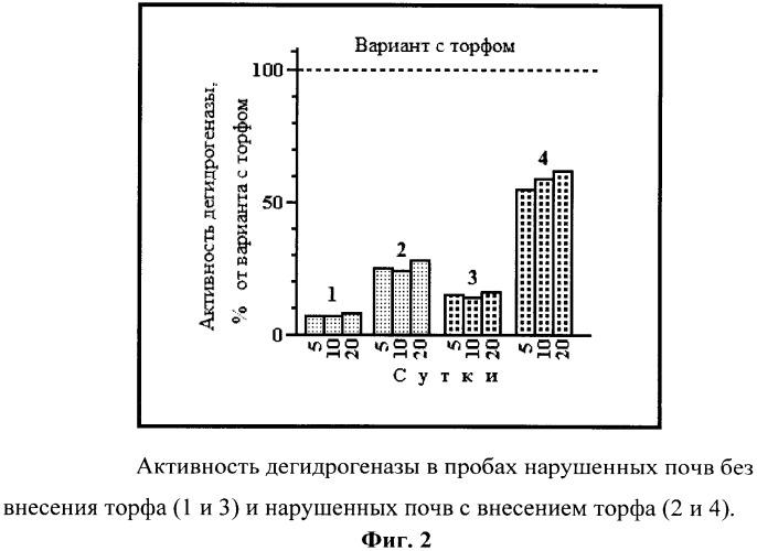 Способ контроля эффективности рекультивации нарушенных тундровых почв различного гранулометрического состава посредством анализа активности дегидрогеназы
