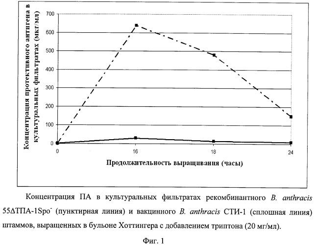 Способ получения протективного антигена и белка s-слоя ea1 из аспорогенного рекомбинантного штамма b. anthracis 55 тпа-1spo-