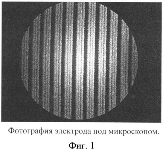 Способ формирования бидоменной структуры в пластинах монокристаллов