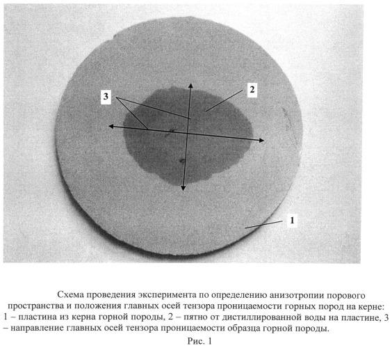 Способ определения анизотропии порового пространства и положения главных осей тензора проницаемости горных пород на керне