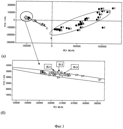 Метод определения видовой принадлежности, свежести и термического состояния мясного сырья