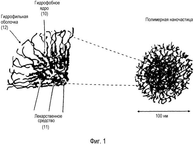 Вододиспергируемые пероральные, парентеральные и местные композиции для плохо растворимых в воде лекарственных препаратов, включающие улучшающие их свойства полимерные наночастицы
