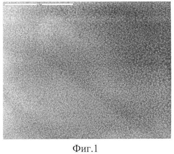 Способ приготовления катализатора для получения синтез-газа