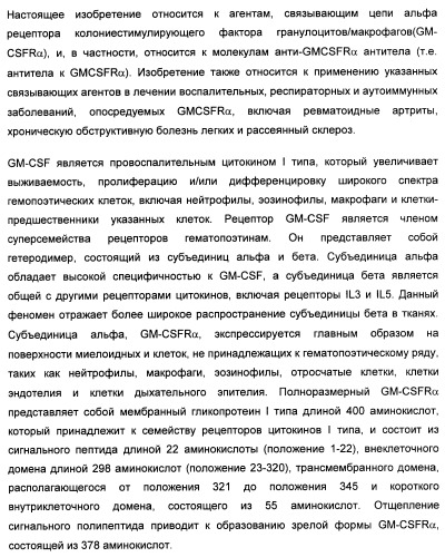 Связующий элемент для рецептора gm-csf