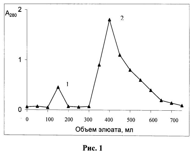 Способ получения модифицированной формы триптофанил-трнк-синтетазы